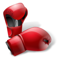 Powerful punch boxing gloves