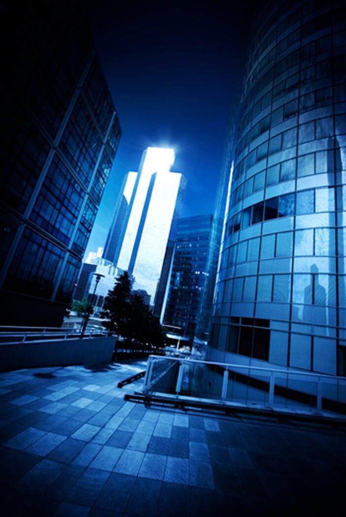 Netsuite CRM integration to Customer Portal