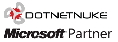 DotNetNuke SEO Consulting