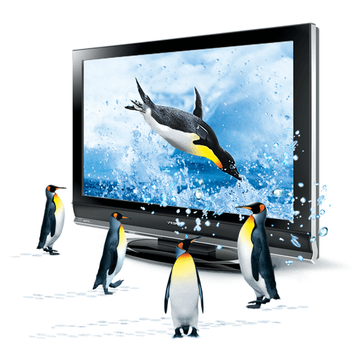 directories and google penguin