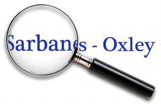 compliance with sarbanes oxley for IT and web portals